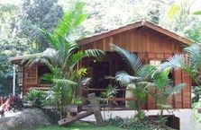 Kaissara Hostel  This is a hostel in Trindade, Paraty, Brazil.  It´s wonderful! It´s in the middle of the jungle and next to the beach!