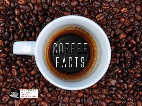 Is Coffee Bad For You? – 7 Health Benefits Of Coffee – bestsingleservingcoffeemakers.com