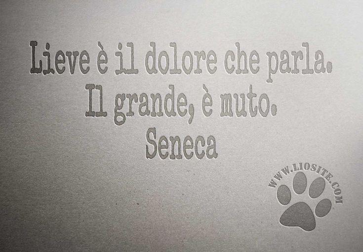 Dolore - Seneca