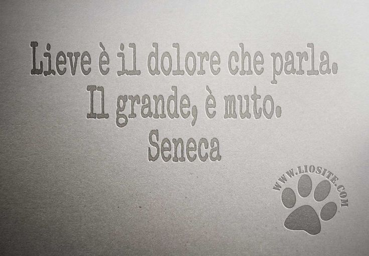 Lieve è il dolore che parla. Il grande, è muto. Seneca