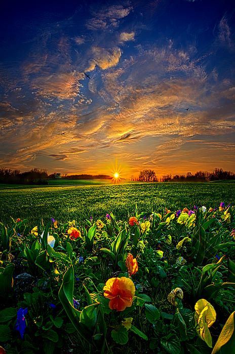 """Through the Veil""  Horizons by Phil Koch. Lives in Milwaukee, Wisconsin, USA. http://phil-koch.artistwebsites.com https://www.facebook.com/MyHorizons"