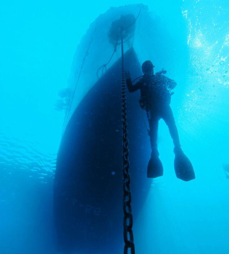 Ayvalık dalış okulu - ida dalış merkezi #scuba #scubadiving #diving #underwater #dalisnoktam #ayvalikdalis #idadalismerkezi #daliskursu #dalismerkezi #dalisokulu #ayvalık #ayvalikscuba #ayvalikida www.idadiving.com