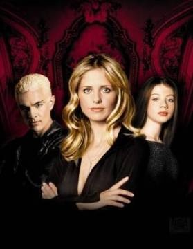 Another one of my fav shows of all time!: Buffy Summer, Buffy The Vampire Slayer, Favorite Tv, Seasons Dvd, Vampires Slayer, Buffy Seasons, Michelle Gellar, Slayer Seasons, Movie