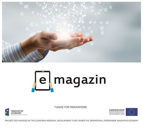 business, innovation, electronic services, electronic newspapers, online publications