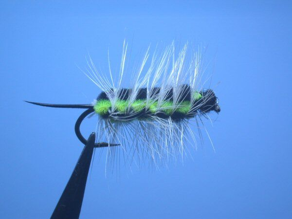 Ww fly patterns fly tying patterns pan fish pinterest for Catalpa worms fishing