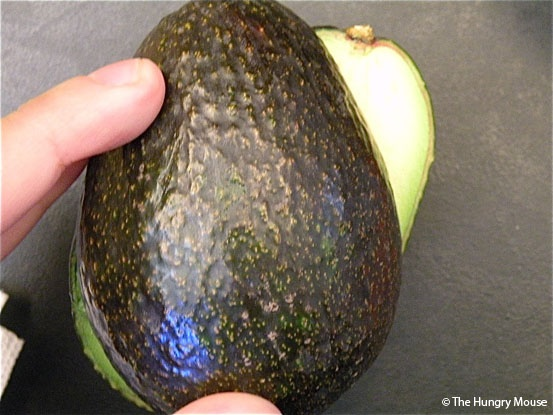 How to grow an avocado.  Does it work?