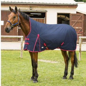 Equi-Theme Tyrex 600D High Neck Lightweight Turnout Rug