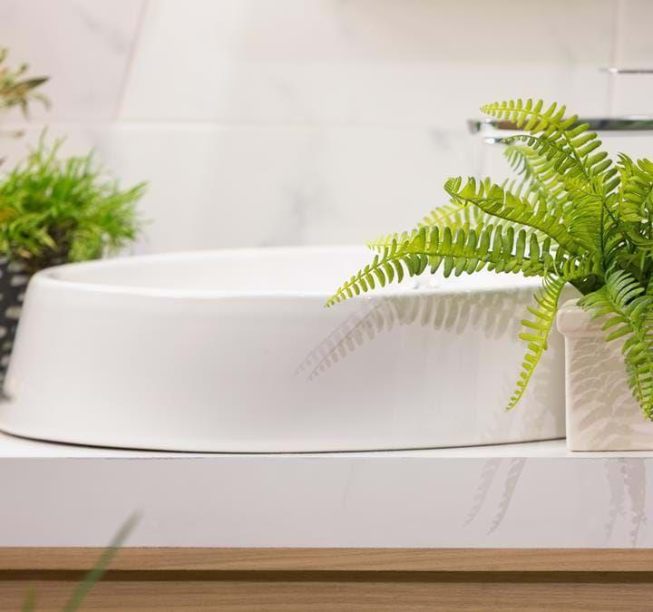 Grøn stueplante til badeværelse