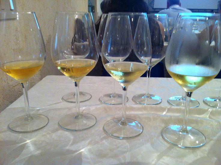 MARSALAWINE 2013- La manifestazione esperienziale della cucina e dei vini del territorio siciliano