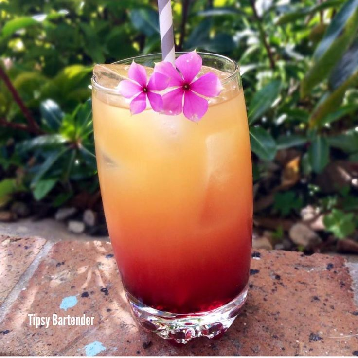 8 Tropical Island Rum Cocktails: 17 Best Images About Booze & Food & Party On Pinterest