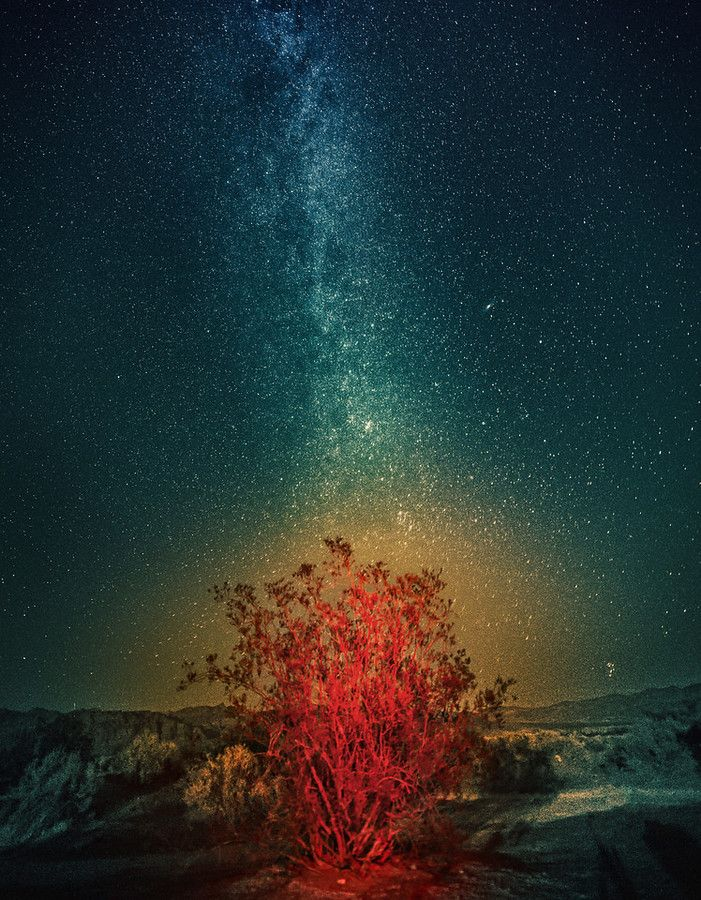 I took this photo in Death Valley one evening. The bush is red and mysterious because of a bit or light-painting with my headlamp. My neck got a bit tired from multiple tries. That glow around it? I don't really know… maybe a bit of the dust from the desert caught the red light.  - Death Valley, California  - Photo from #treyratcliff Trey Ratcliff at http://www.StuckInCustoms.com