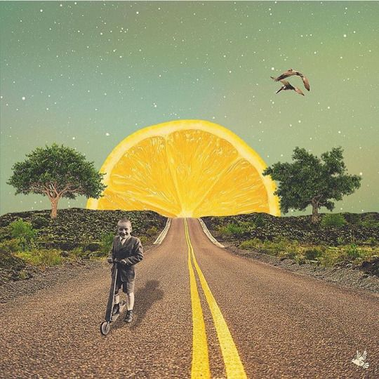 The use of collage here is really nice. Taking a small object like an orange and putting it in the place of something huge, like the sun, makes this world seem small. There is a nice sense of foreground, middle ground, and background that draws the viewer through the image.