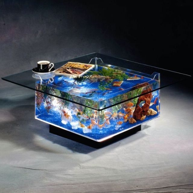 Coffee Table Aquarium -- cleaning it would probably suck, but totally awesome otherwise. Built-in cat entertainment is another plus.