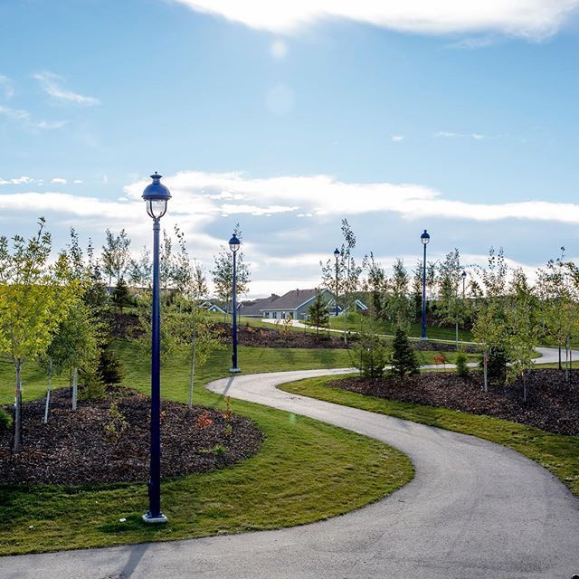 #LakeSummerside Fun Fact #2:    The Summerside Residents' Association Tree Program allows residents to purchase a tree for installation in a park or trail area within the community! Have you purchased your tree yet?