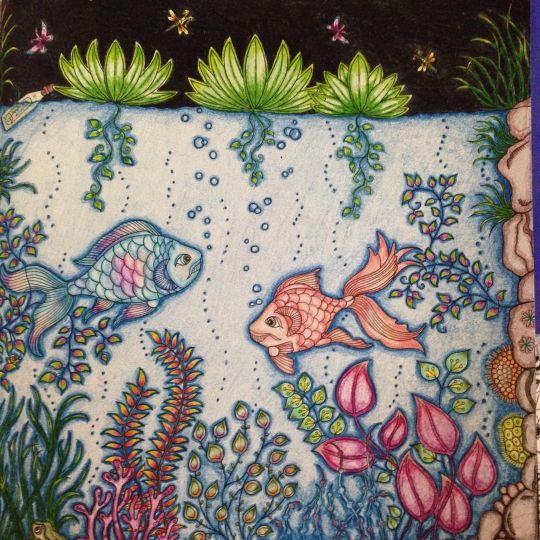 26 Best Images About Fish Secret Garden Peixe Jardim