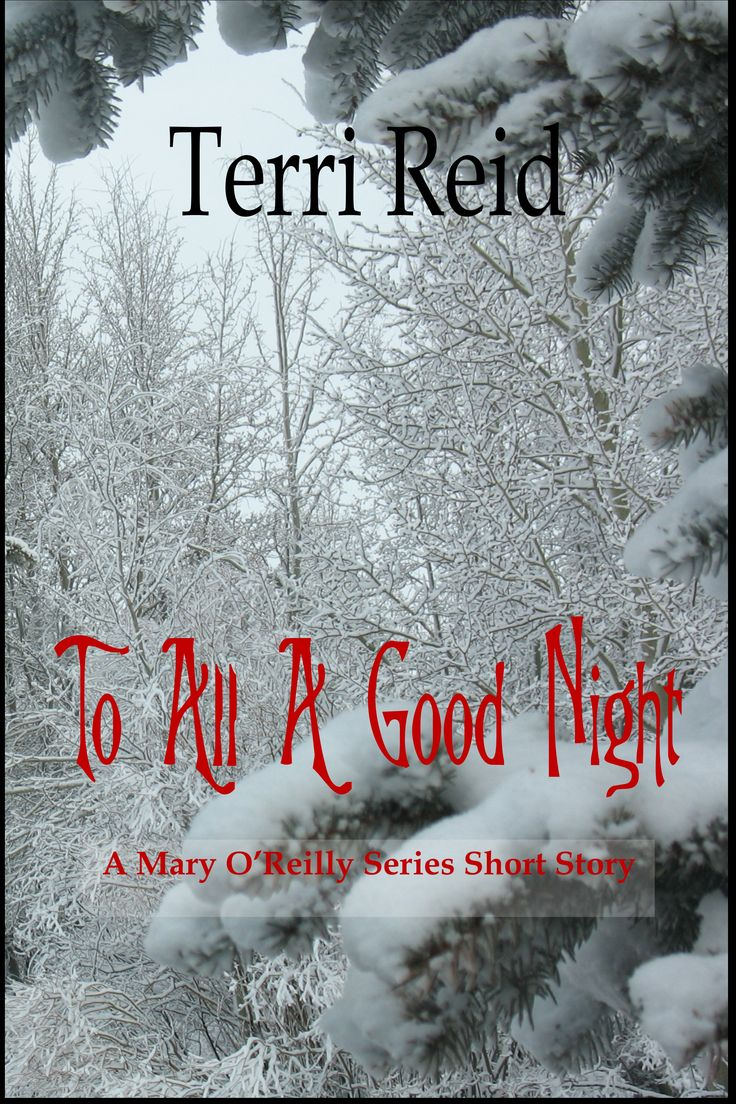 New Release – A Mary O'Reilly Christmas Short Story