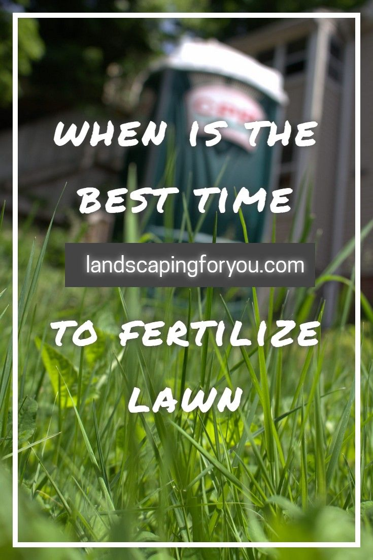 The Secret You Require To Know When To Fertilize Lawn Lawn