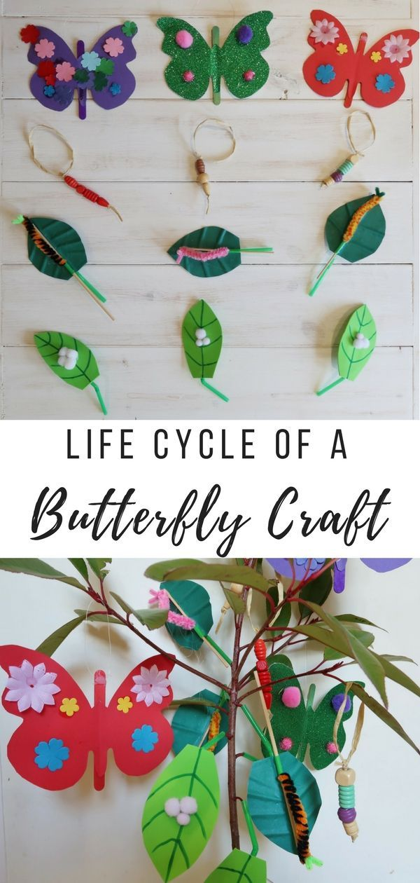 DIY Craft: Lifecycle of a Butterfly Craft: How to make four different decorations to create your own lifecycle of a butterfly tree.
