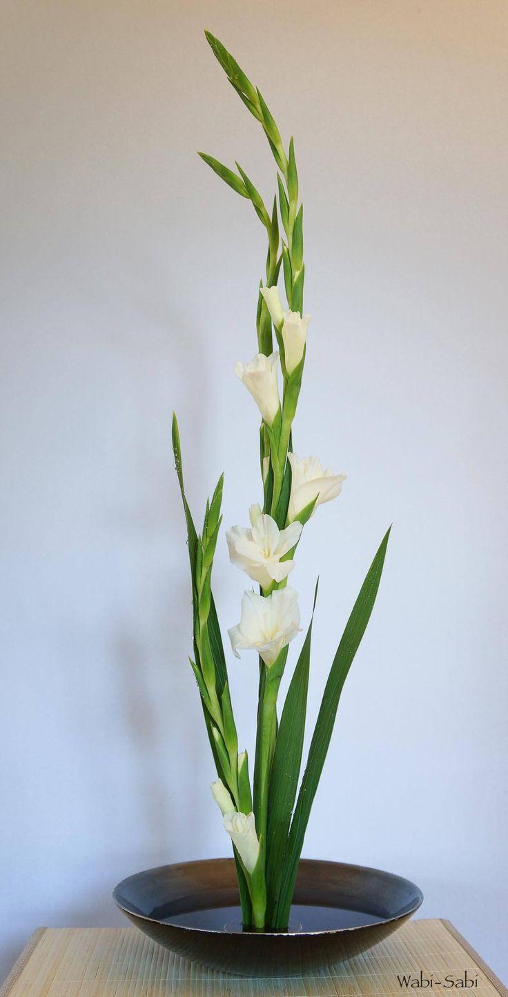 gladiolos 1   Wabi-Sabi Ikebana   Flickr