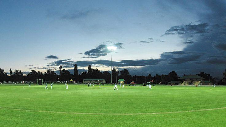 Cricket under lights