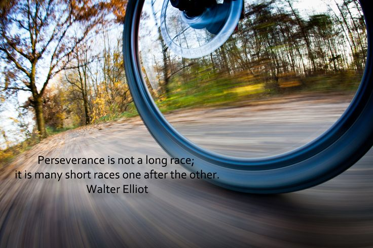 #dailyquotes Perseverance is not a long race; it is many short races one after the other. -Walter Elliot