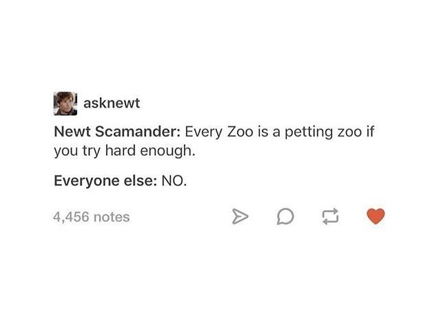 I appreciate this attitude because I once went to a Zoo in Australia and tried to touch as many animals as I could. Even the Echidna. It felt weird.