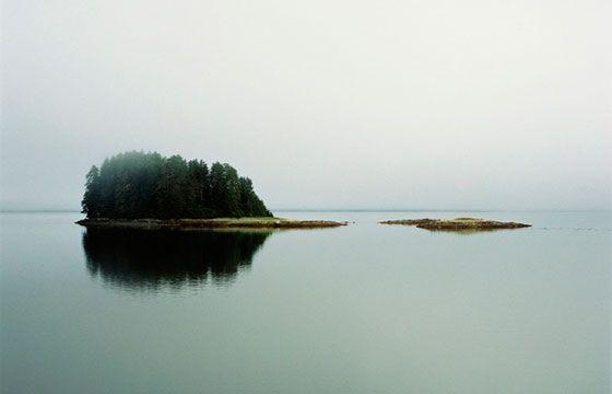 "Juxtapoz Magazine - Debra Bloomfield's ""Wilderness"""