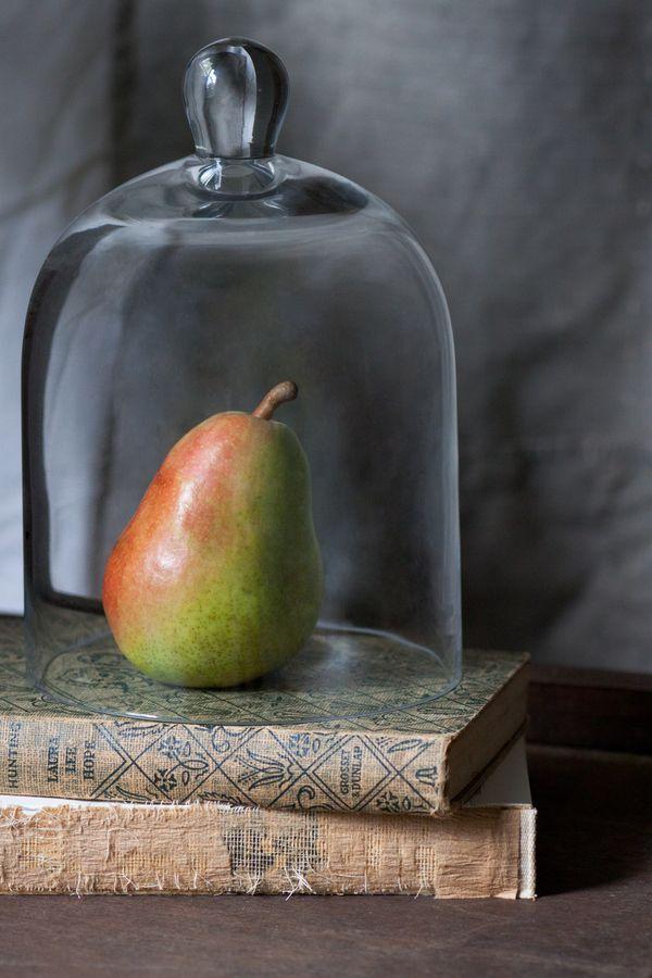 peer in een stolp by Alison Dandrea