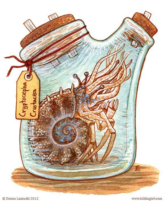 """Bottled: Cryptocephus"" by Emma Lazauski (2012)"