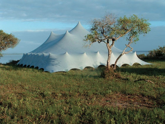 Stretch tents and canopies