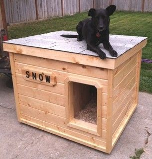 Snow - Washington: several years of being tried and tested, this dog house has been proven to be the most comfortable and the safest home you can build for your beloved dog.