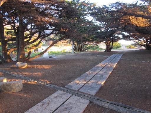 Chilean landscape architect Teresa Moller