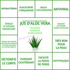 Les Bienfaits du Jus d'Aloe Vera | JUS D'ALOE VERA Le Monde s'Eveille Grâce à Nous Tous ♥
