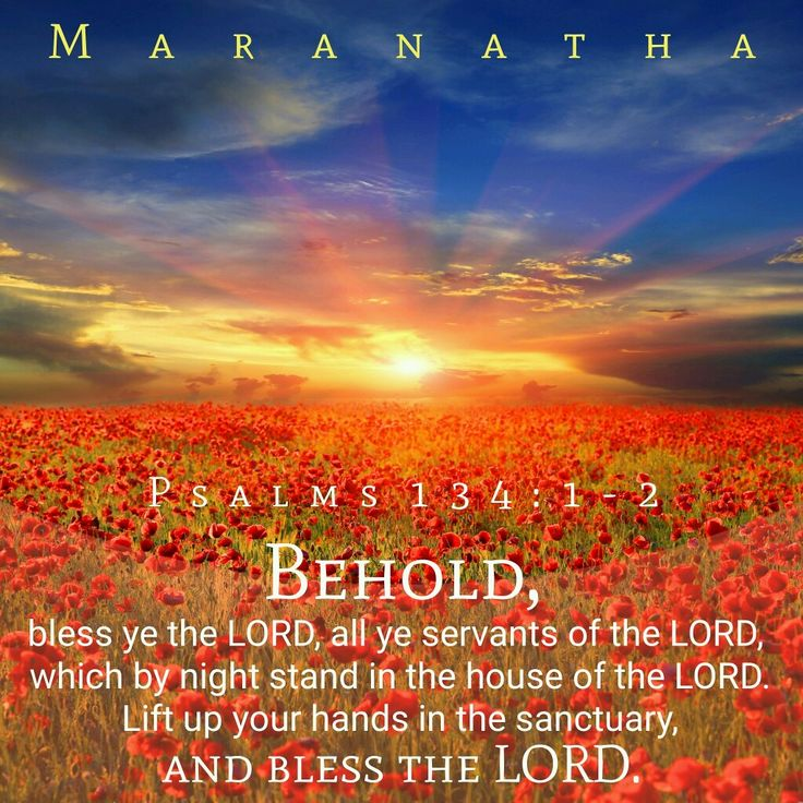 #Psalms 134:1-3 (KJV)  Behold, bless ye the LORD, all ye servants of the LORD, which by night stand in the house of the LORD. Lift up your hands in the sanctuary, and bless the LORD. The LORD that made heaven and earth bless thee out of Zion.  #MARANATHA