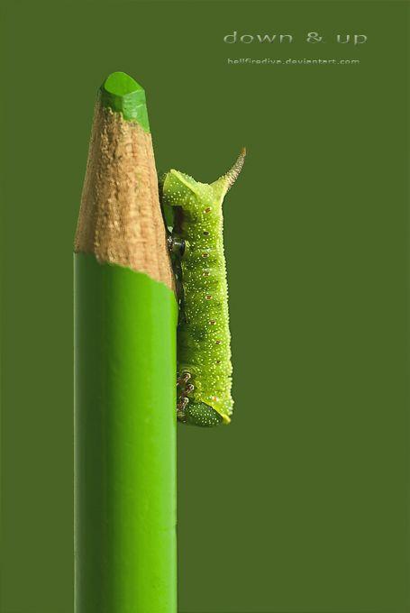 Green | Grün | Verde | Grøn | Groen | 緑 | Emerald | Colour | Texture | Style | Form | Pattern | : down + up : by hellfirediva