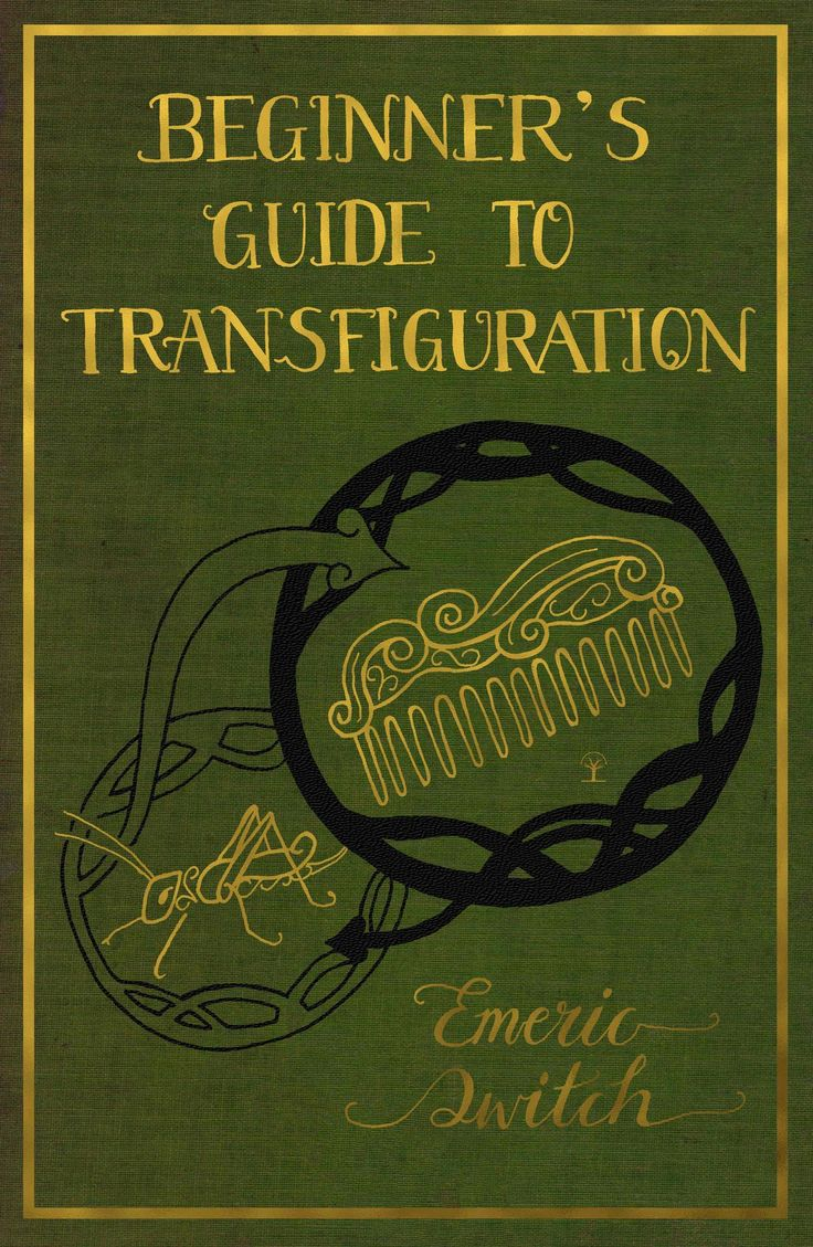 Beginners guide to transfiguration emeric switch