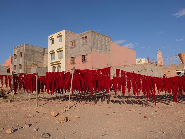 Wool-yarn drying in the sun after dyeing