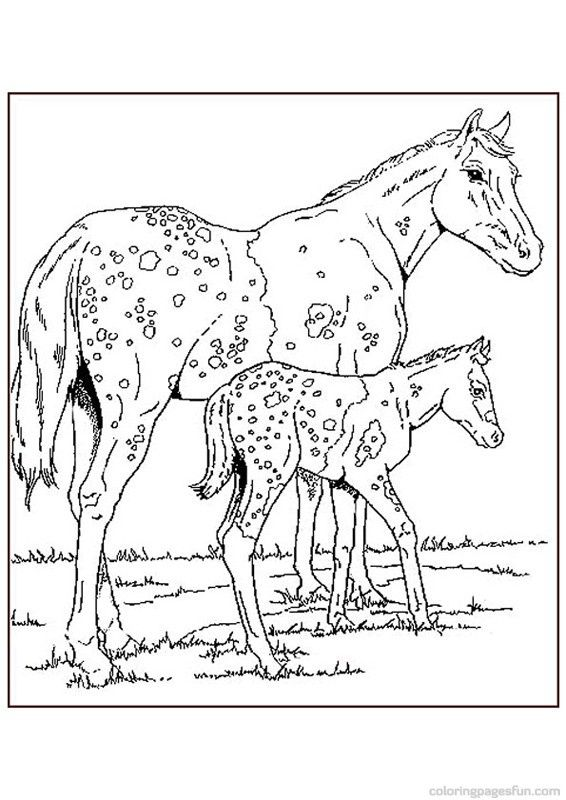 kids coloring pages horses - photo#20