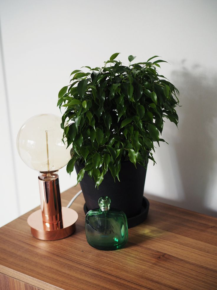 Ingrid Holm Blog, copper lamp, edison light bulb large, black pot