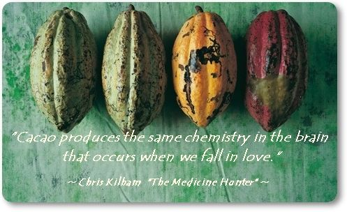 Maybe you've sometimes wondered why there's such a strong connection between chocolate and love?  We did a little research and found out that there are several scientific reasons for that. Here's just one:  Anandamide is a neurotransmitter produced by the brain and induces a feeling of euphoria. Just like...falling in love!  It gets its name from the Sanskrit word ananda which means bliss.  Well, guess where else we can find this bliss-inducing agent?  Chocolate, of course
