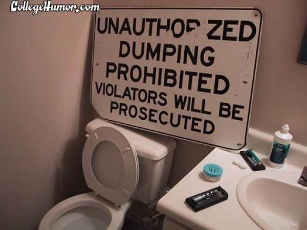 Best Images About Toilet On Pinterest Toilets Jokes And