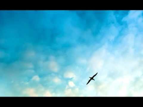 Coran Audio Français: Sourate 35 - Fatir (Le Créateur) - Le style de cette sourate montre qu'elle fut probablement révélée au milieu de la période mecquoise, plus particulièrement à l'époque où l'opposition s'était accrue et toute méchanceté fut mise à l'œuvre pour faire échouer la Mission du Noble Prophète.  La sourate avertit et réprimande les Mecquois et leurs chefs pour leur opposition au Message du Monothéisme prêché par le Saint Prophète, à la manière d'un avertisseur qui leur veut
