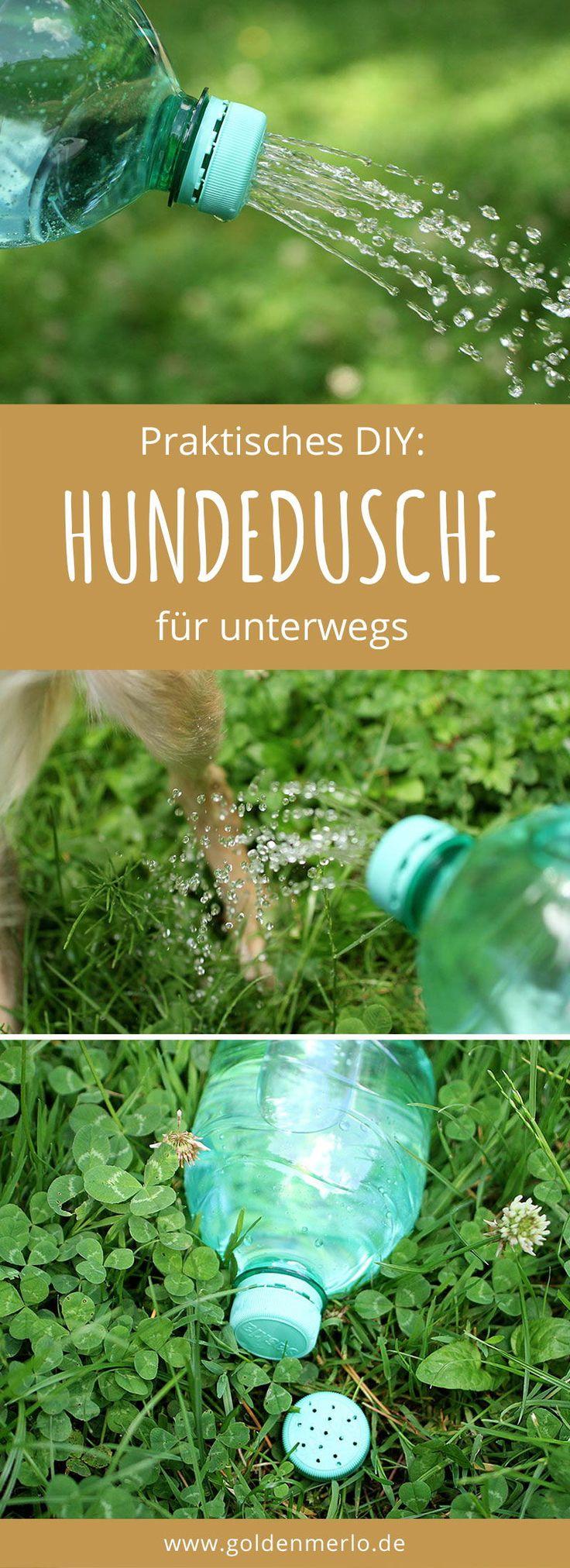 10 erstaunliche Lifehacks, Tipps und Tricks für Hundefreunde – GoldenMerlo Hundeblog | Silken Windsprite