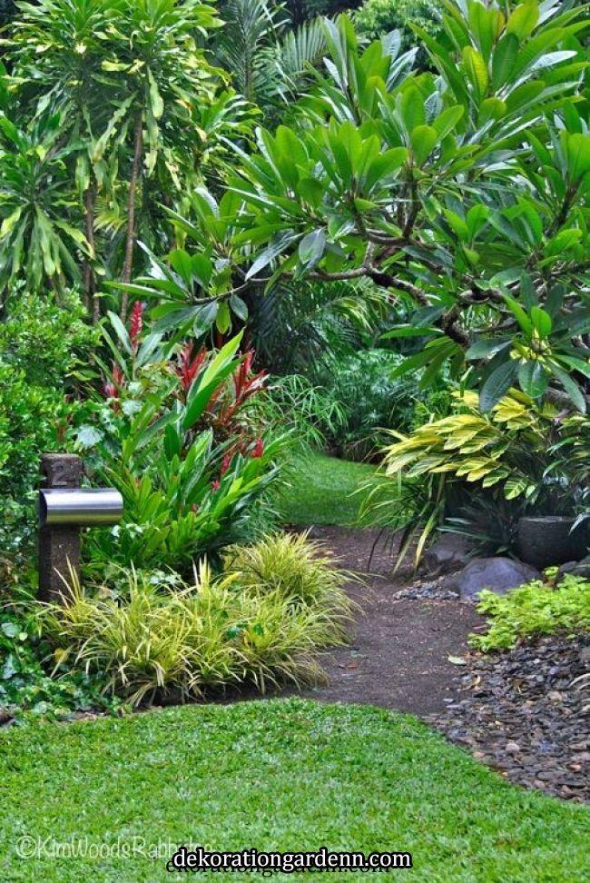 Tabu: Paraíso Tropical em Cairns, o ciclone Ita de Queensland ameaçou recentemente …   – Halloween garden
