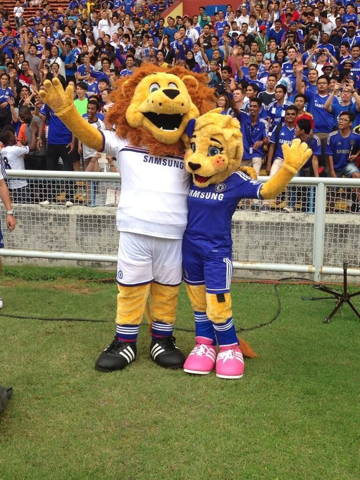 chelseafc Chelsea FC 3h Here are Stamford and Bridget pictured together... #CFCTour