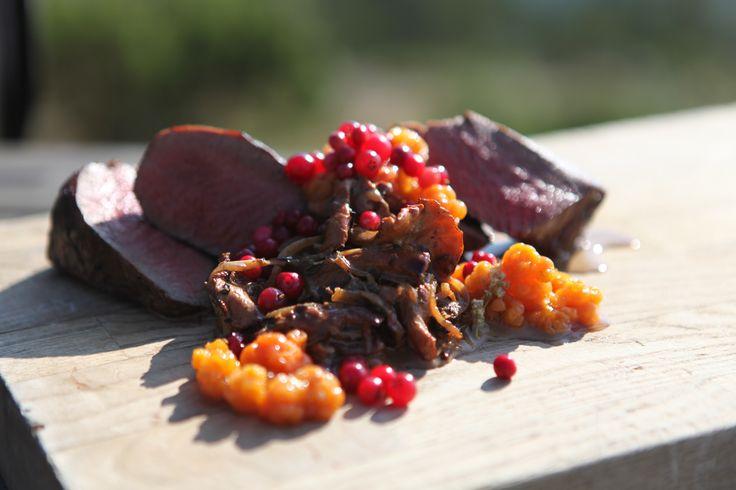 Elk, Cloudberries and Chanterelles