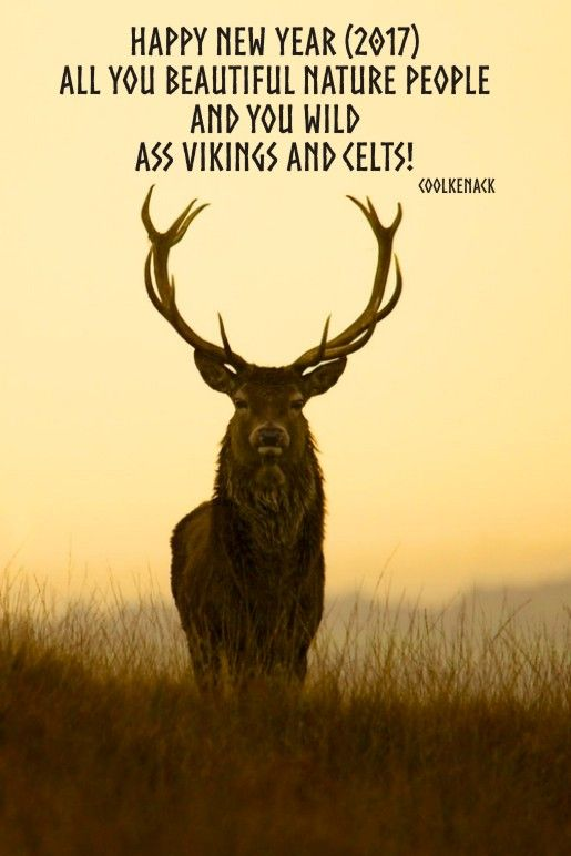 Happy New Year 2017 - Viking, Celtic, Nature stuff