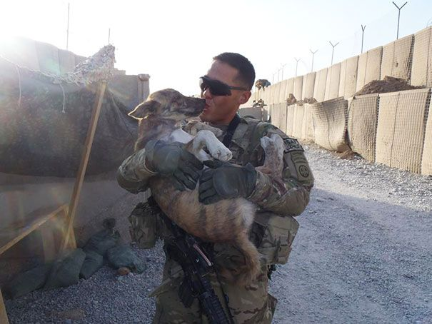 When You See What These 25 Soldiers Did For Their Pets, You Won't Be Able To Stop Smiling [STORY]