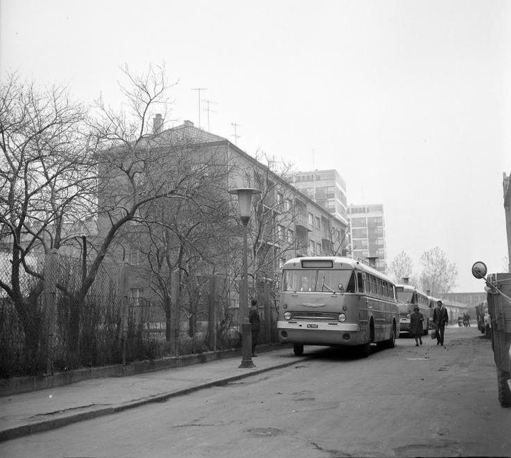 Kálvin utca, a Szabadság utca felől a Jókai utca felé nézve.