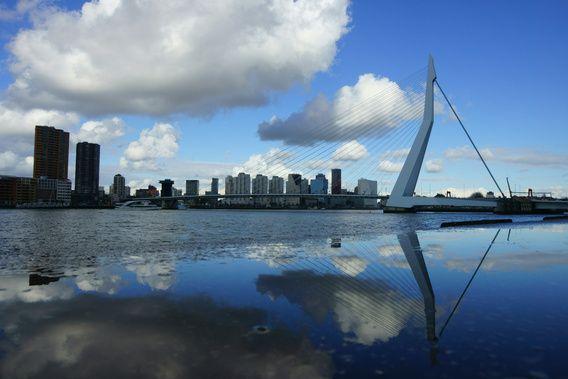 Erasmusbrug Rotterdam van Michel van Kooten